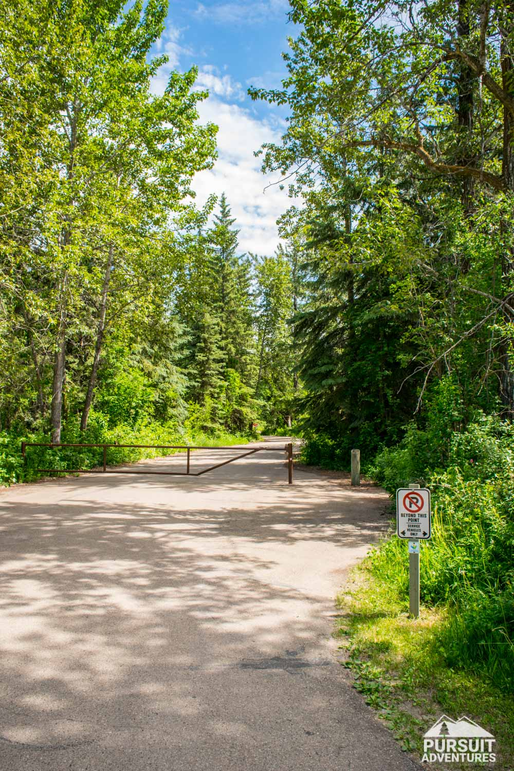 McKenzie Trails Recreation Area