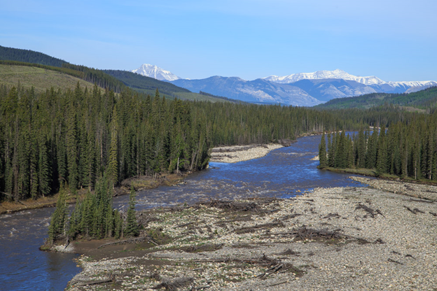 Upper Red Deer River